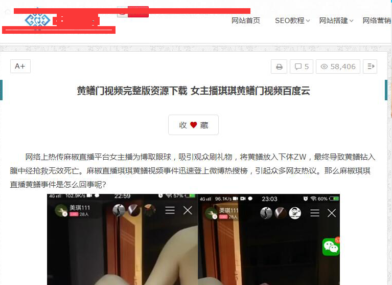 网站文章引导非法下载